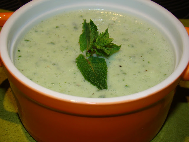 Sopa Fria de Pepino com Hortelã / Cold Cucumber Soup with Mint
