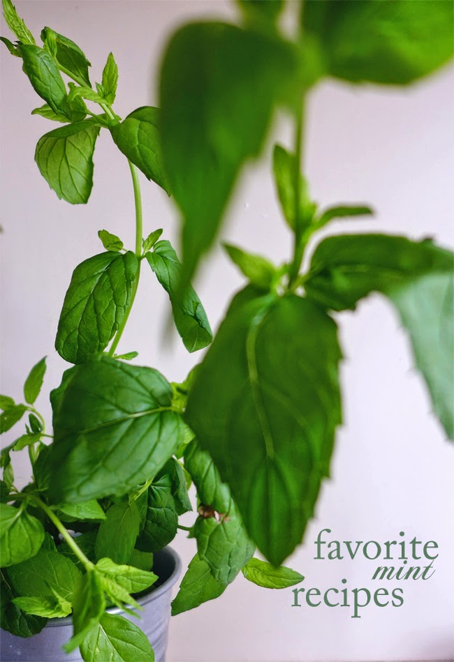 Receitas frecas com menta/ Favorite mint recipes