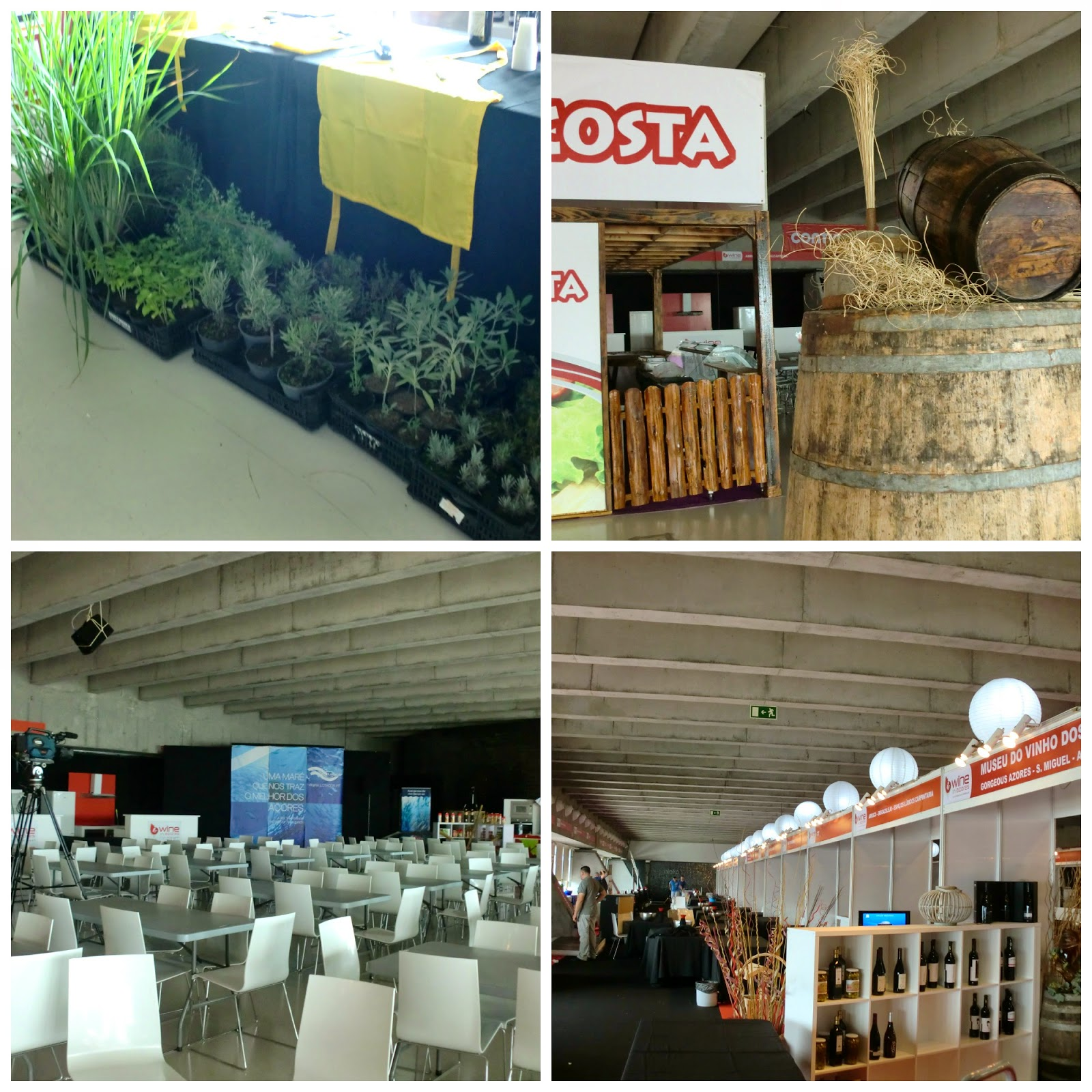 Wine in Azores 2014 - Behind the Scenes - Parte 2!